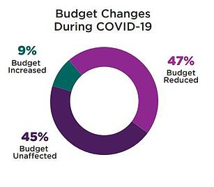 Budget Changes During C19